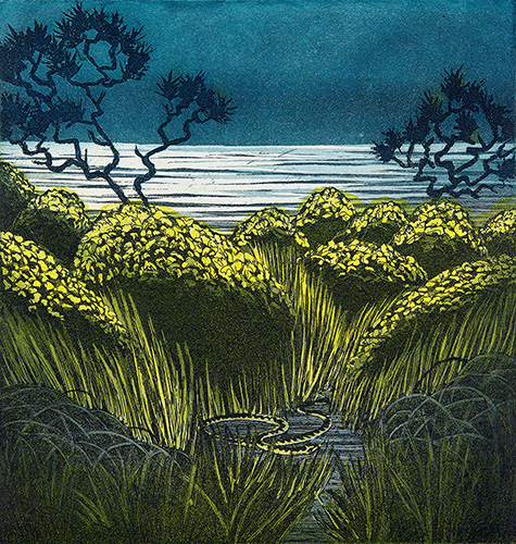 'Adder Path' by Morna Rhys
