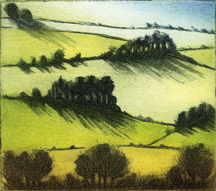 'Morning Shadows' by Morna Rhys