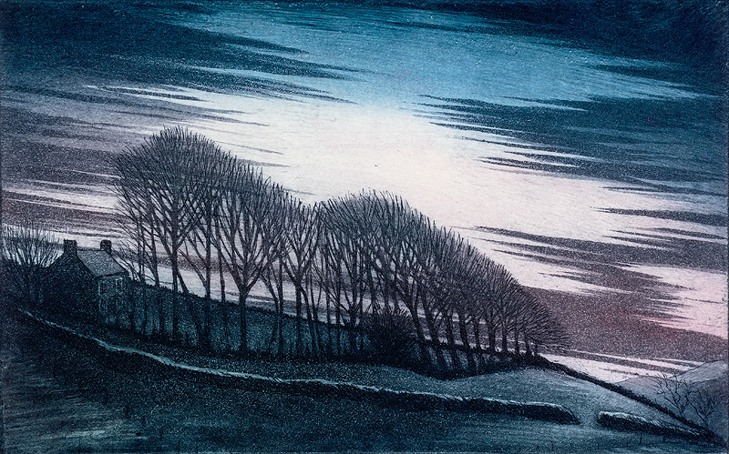 'Nightfall' by Morna Rhys