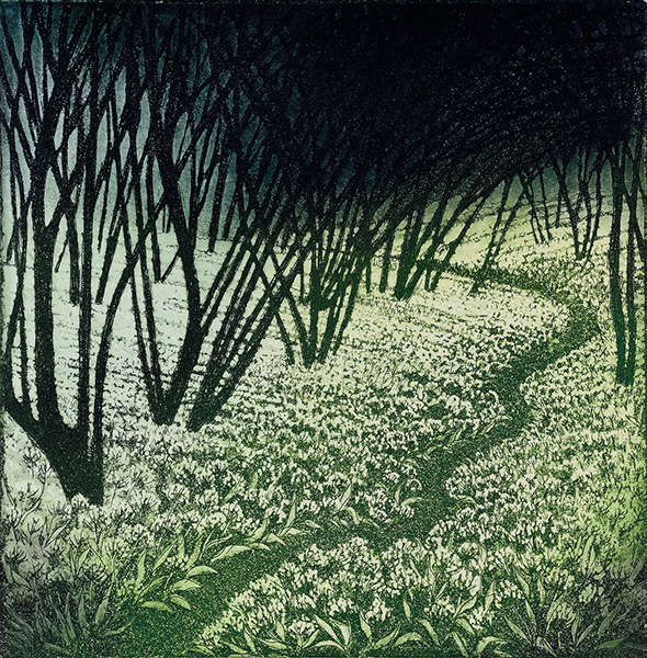 'Ramson Path' by Morna Rhys
