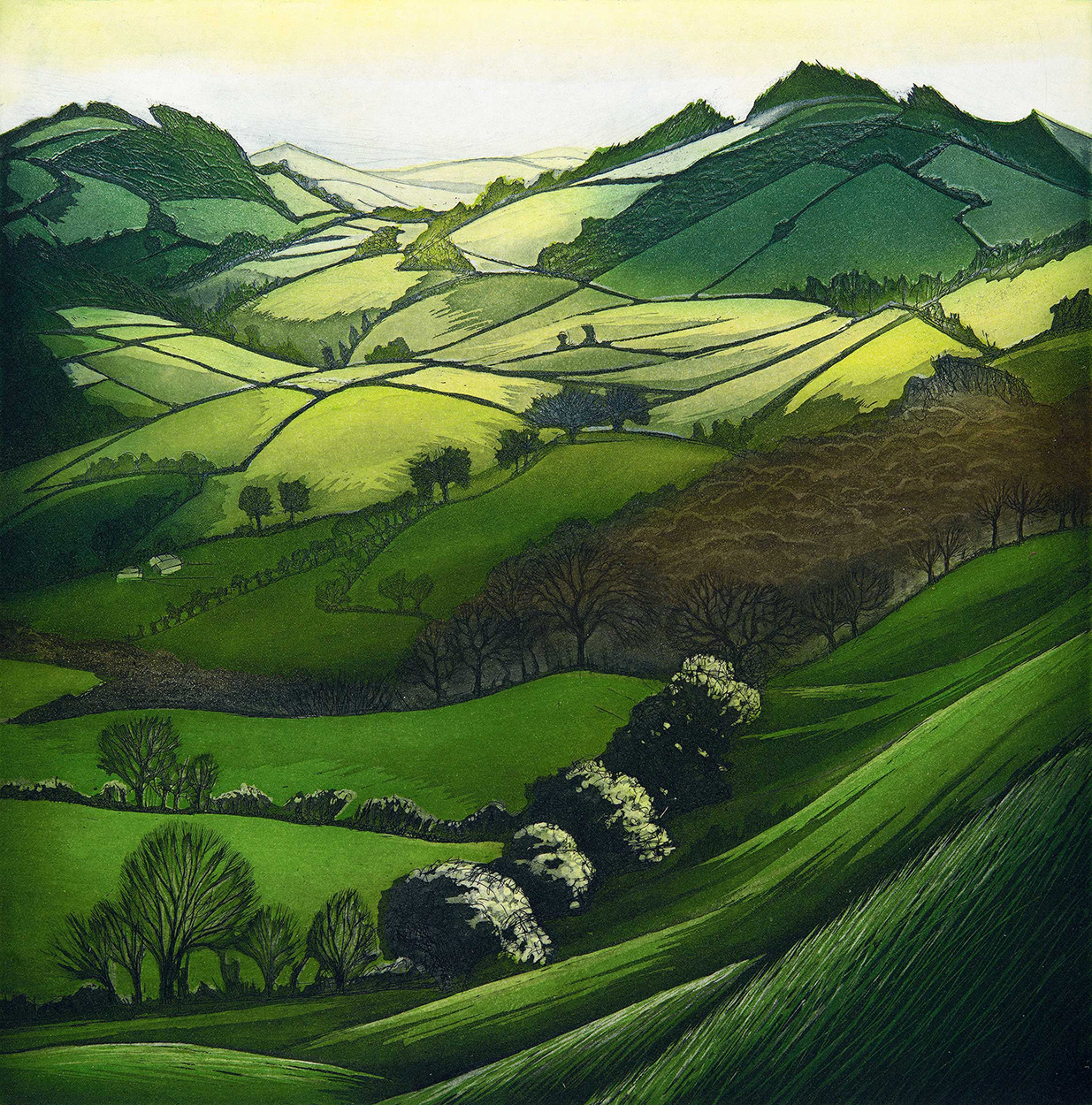 'The Dancing Hills' by Morna Rhys