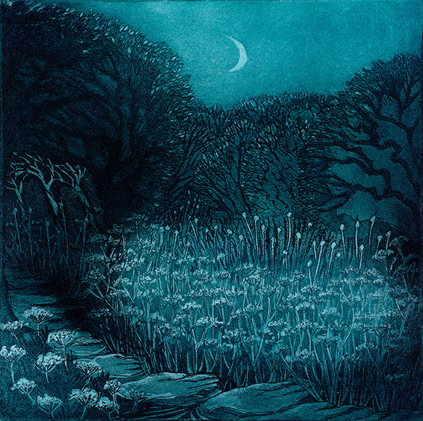'Flowering Stream' by Morna Rhys