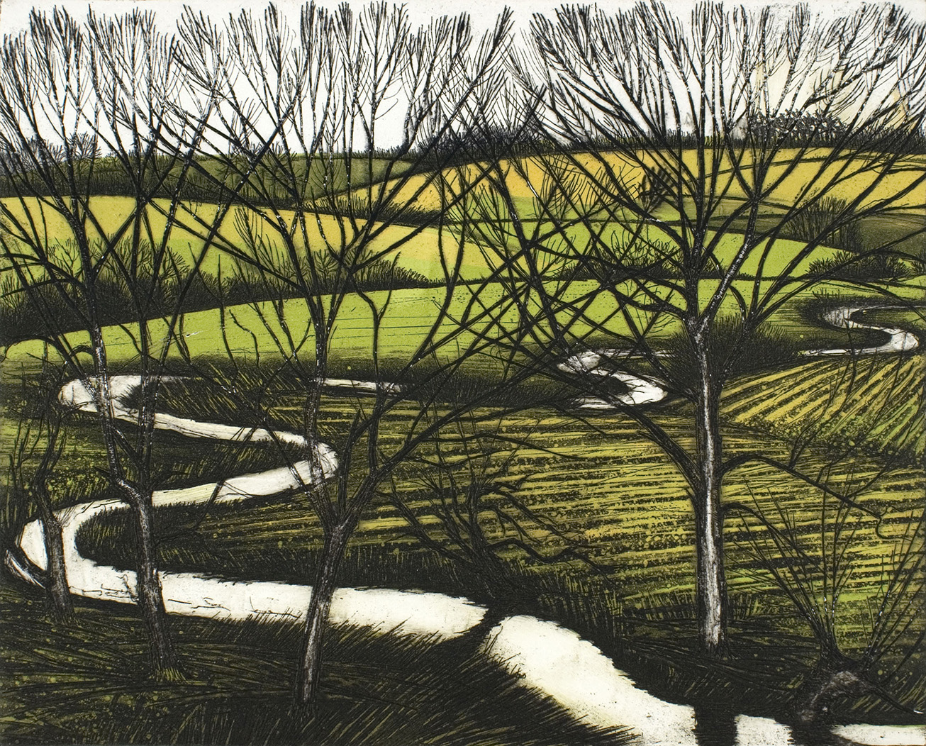 'Through the Trees' by Morna Rhys
