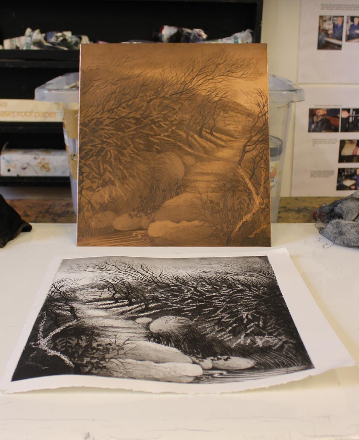 Copper plate etching and printed work by Morna Rhys